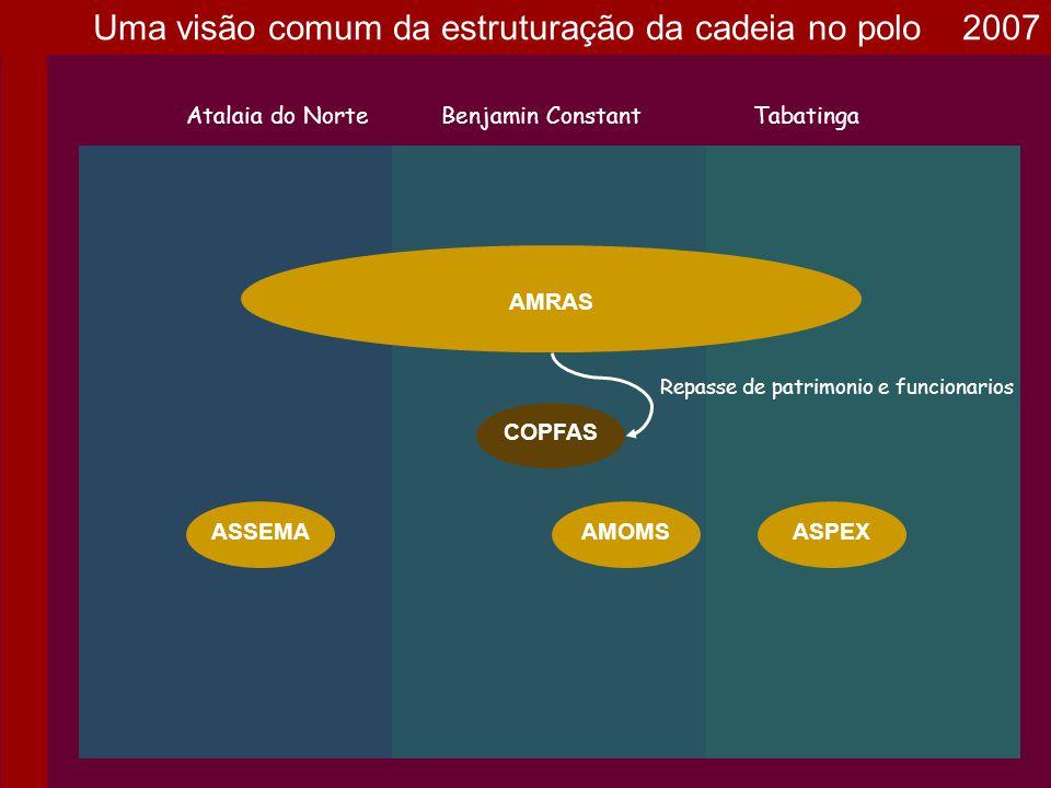 Uma visão comum da estruturação da cadeia no polo 2007
