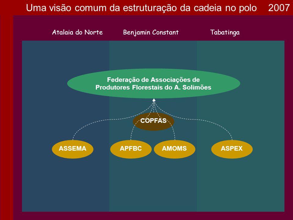 Federação de Associações de Produtores Florestais do A. Solimões