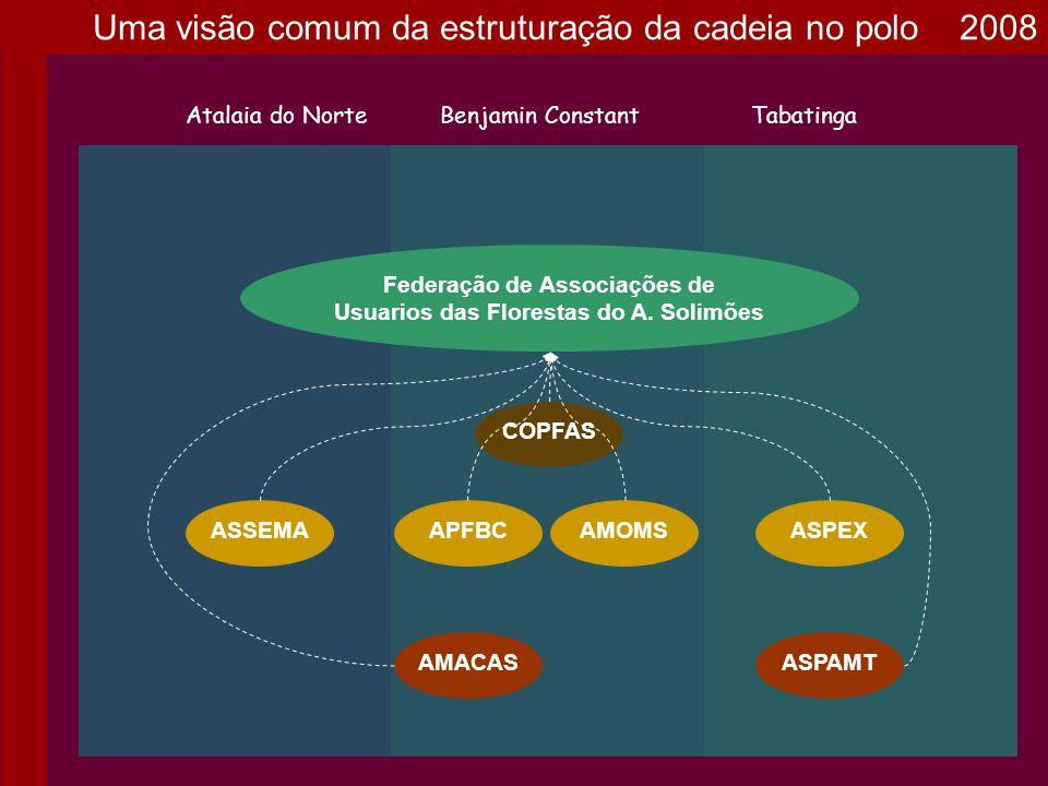 Federação de Associações de Usuarios das Florestas do A. Solimões