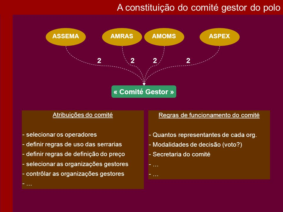 Regras de funcionamento do comité