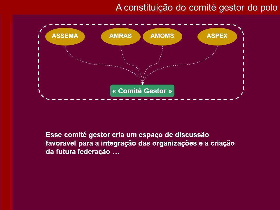 A constituição do comité gestor do polo