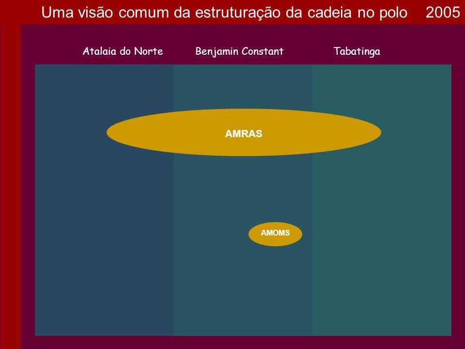 Uma visão comum da estruturação da cadeia no polo 2005