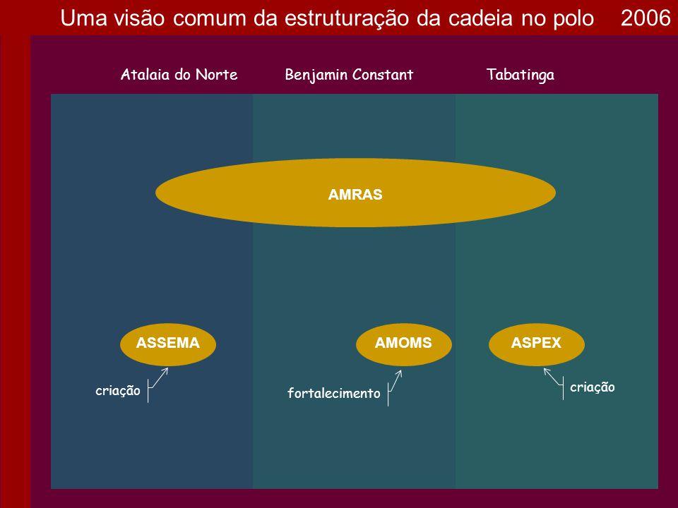 Uma visão comum da estruturação da cadeia no polo 2006