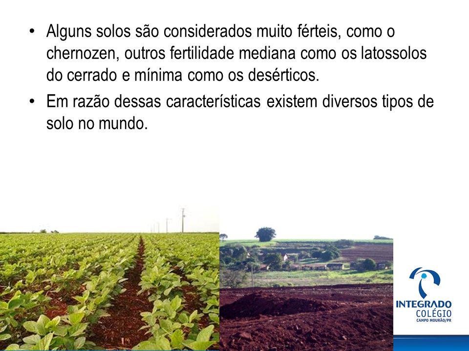 Alguns solos são considerados muito férteis, como o chernozen, outros fertilidade mediana como os latossolos do cerrado e mínima como os desérticos.