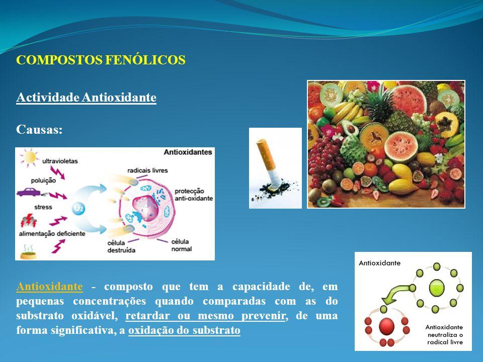 Actividade Antioxidante Causas: