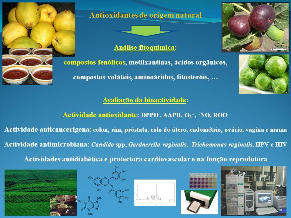 Antioxidantes de origem natural