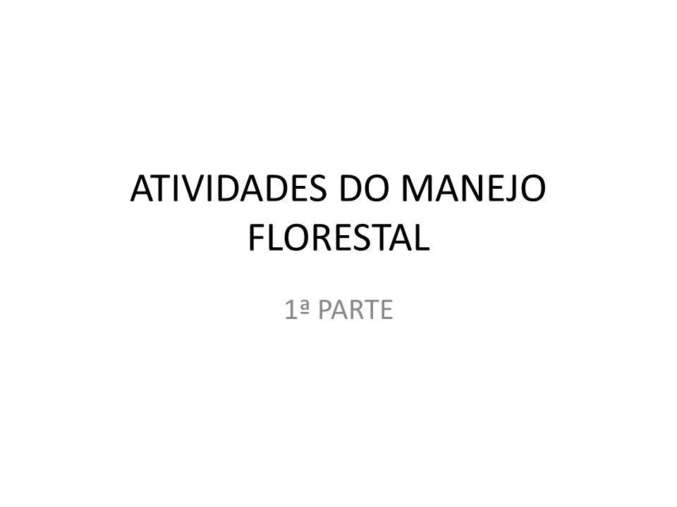 ATIVIDADES DO MANEJO FLORESTAL