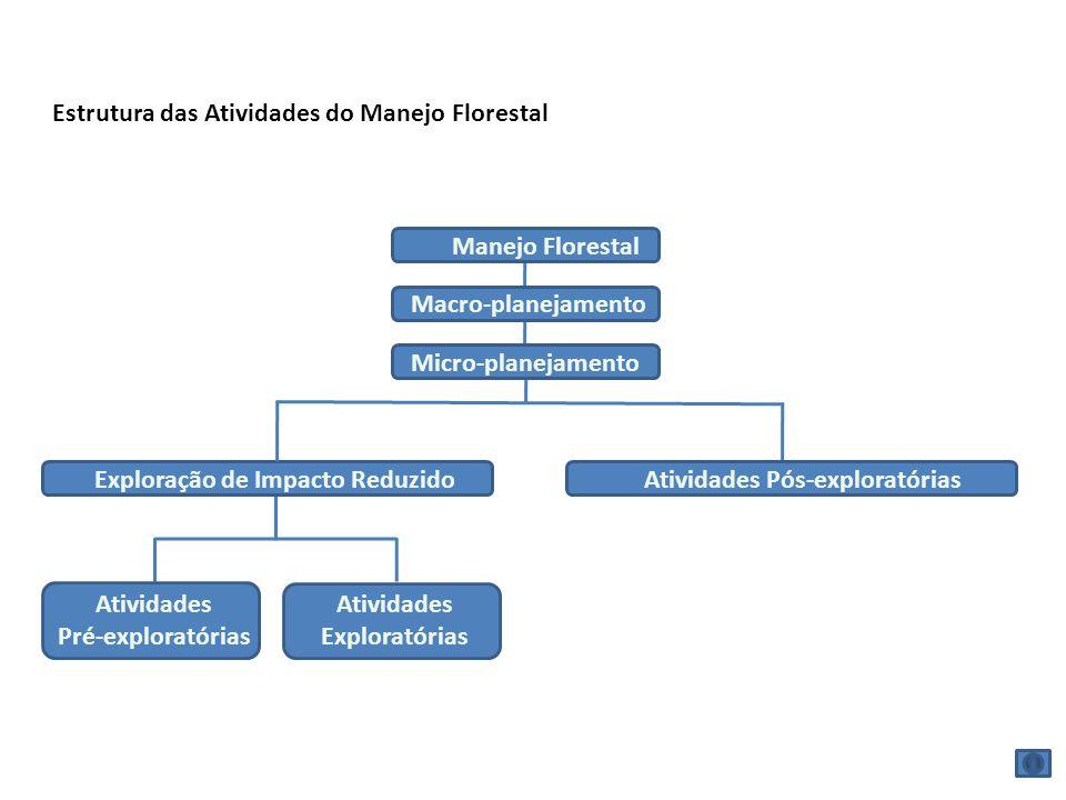 Estrutura das Atividades do Manejo Florestal