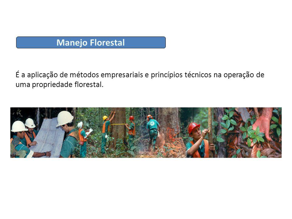 Manejo Florestal É a aplicação de métodos empresariais e princípios técnicos na operação de uma propriedade florestal.