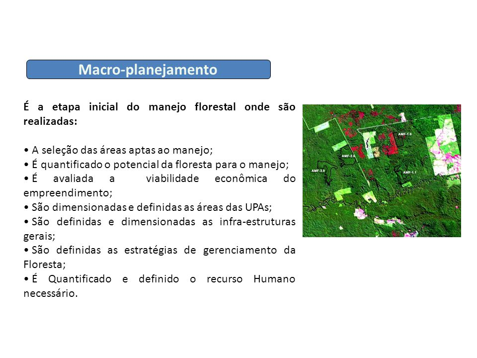 Macro-planejamento É a etapa inicial do manejo florestal onde são realizadas: A seleção das áreas aptas ao manejo;
