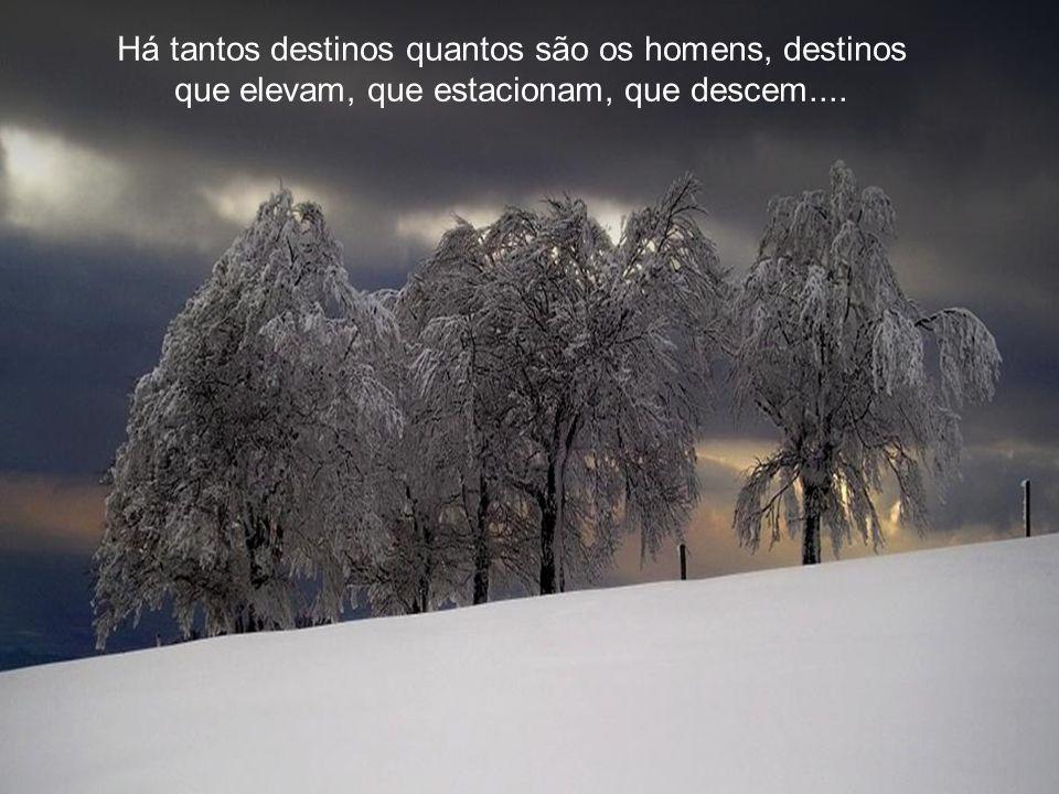 Há tantos destinos quantos são os homens, destinos que elevam, que estacionam, que descem....