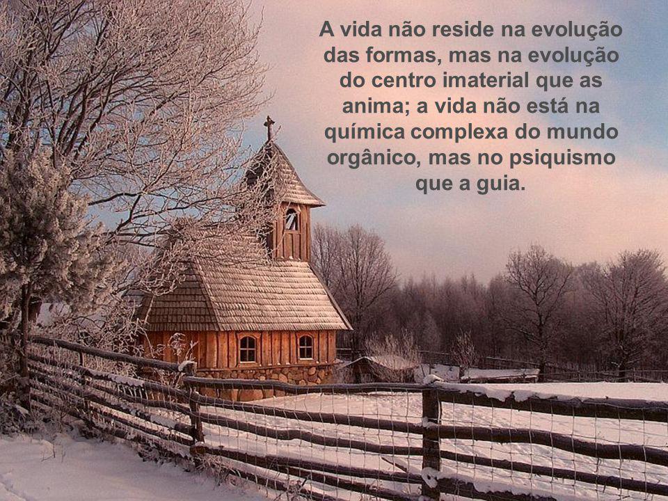 A vida não reside na evolução das formas, mas na evolução do centro imaterial que as anima; a vida não está na química complexa do mundo orgânico, mas no psiquismo que a guia.