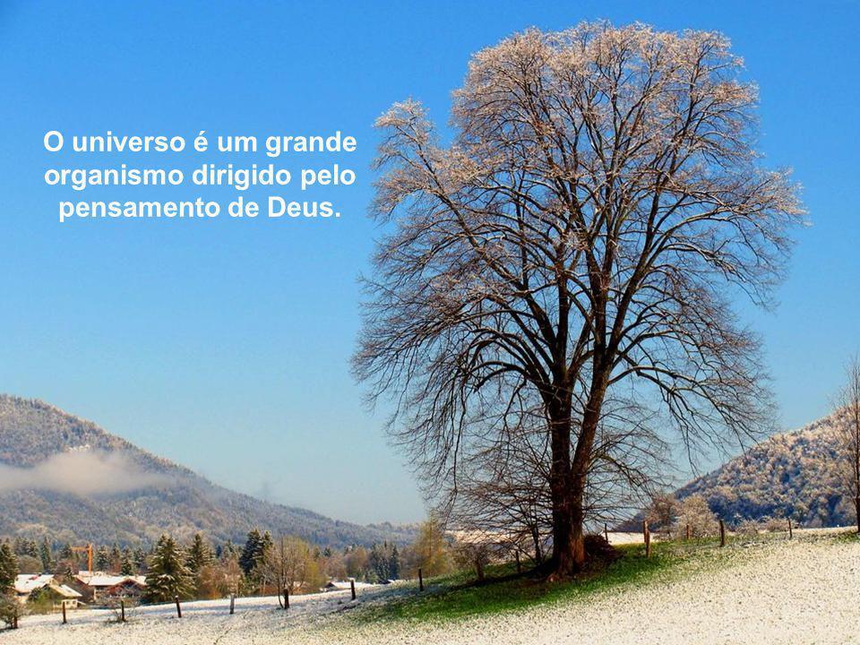 O universo é um grande organismo dirigido pelo pensamento de Deus.