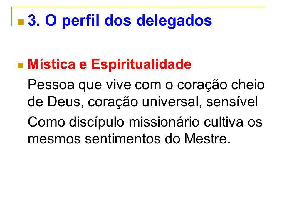 3. O perfil dos delegados Mística e Espiritualidade