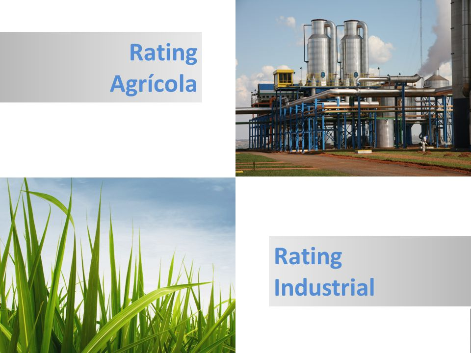 Rating Agrícola Rating Industrial
