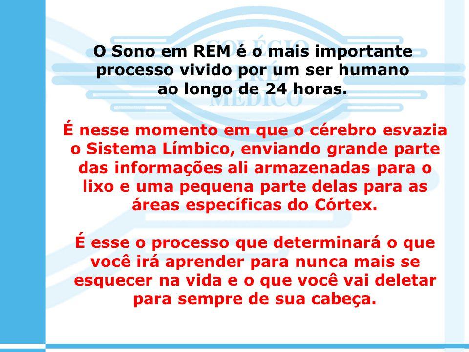 O Sono em REM é o mais importante processo vivido por um ser humano ao longo de 24 horas.