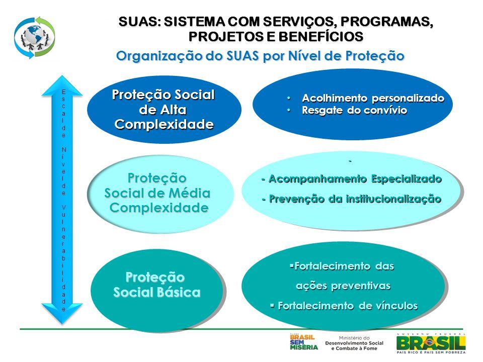 SUAS: SISTEMA COM SERVIÇOS, PROGRAMAS, PROJETOS E BENEFÍCIOS