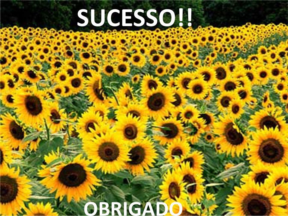 SUCESSO!! OBRIGADO