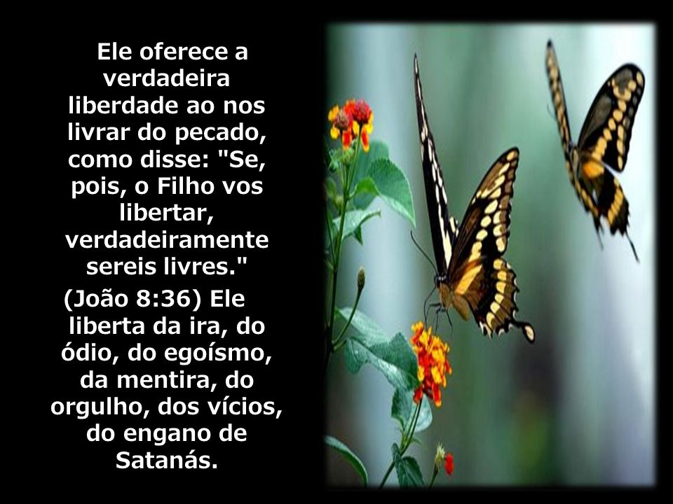 Ele oferece a verdadeira liberdade ao nos livrar do pecado, como disse: Se, pois, o Filho vos libertar, verdadeiramente sereis livres.