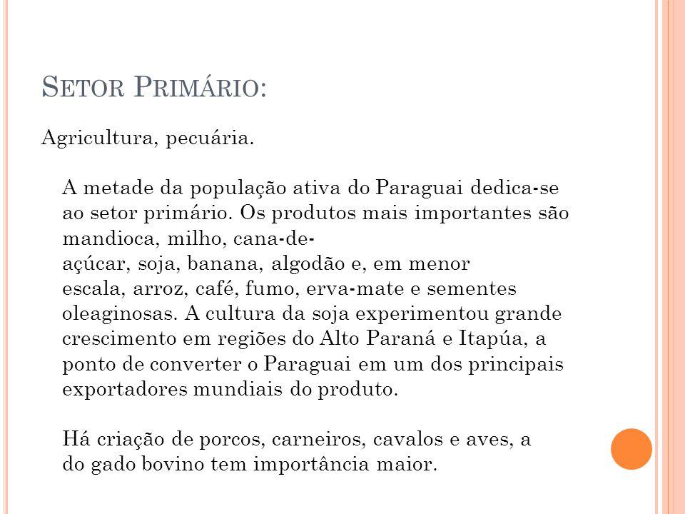 Setor Primário: