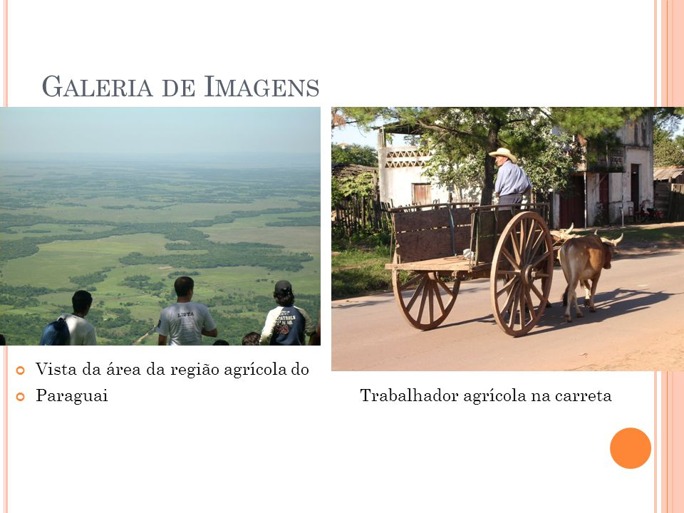 Galeria de Imagens Vista da área da região agrícola do