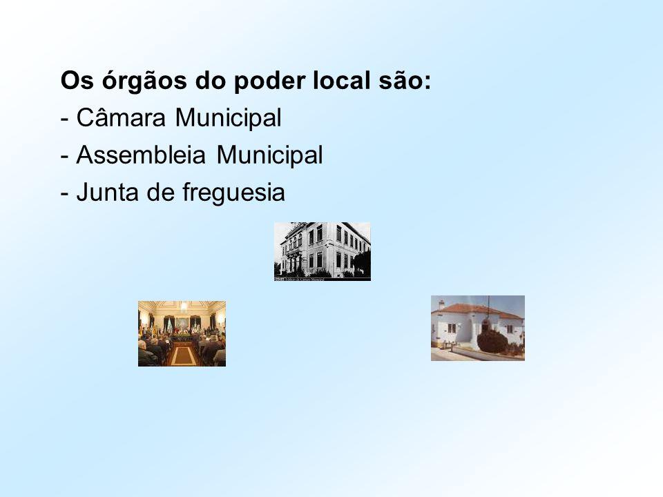Os órgãos do poder local são: