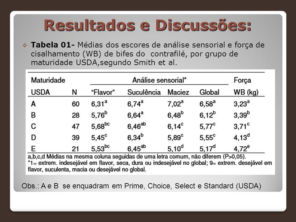 Resultados e Discussões: