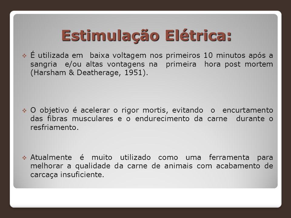 Estimulação Elétrica: