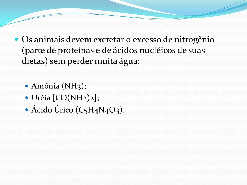 Os animais devem excretar o excesso de nitrogênio (parte de proteínas e de ácidos nucléicos de suas dietas) sem perder muita água:
