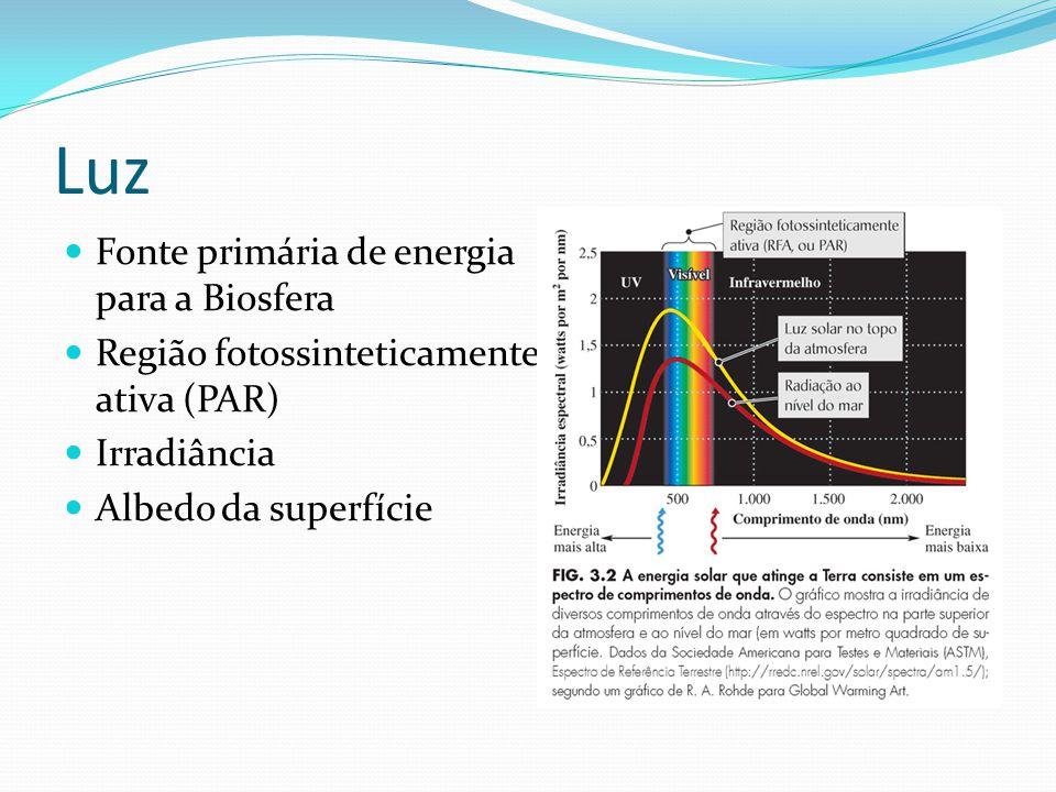 Luz Fonte primária de energia para a Biosfera