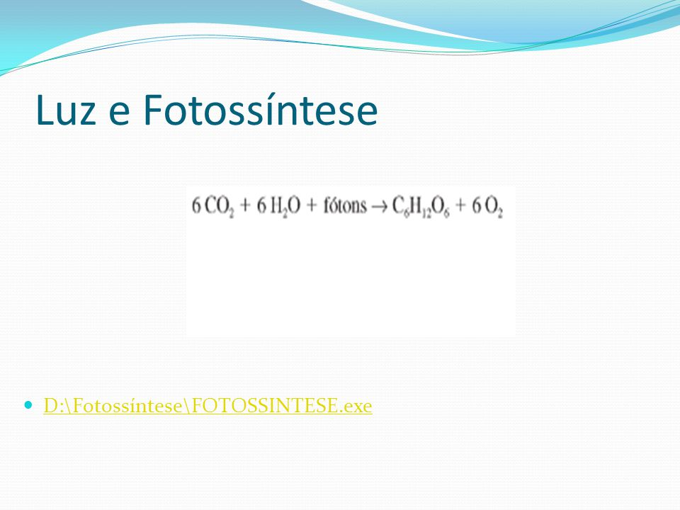 Luz e Fotossíntese D:\Fotossíntese\FOTOSSINTESE.exe