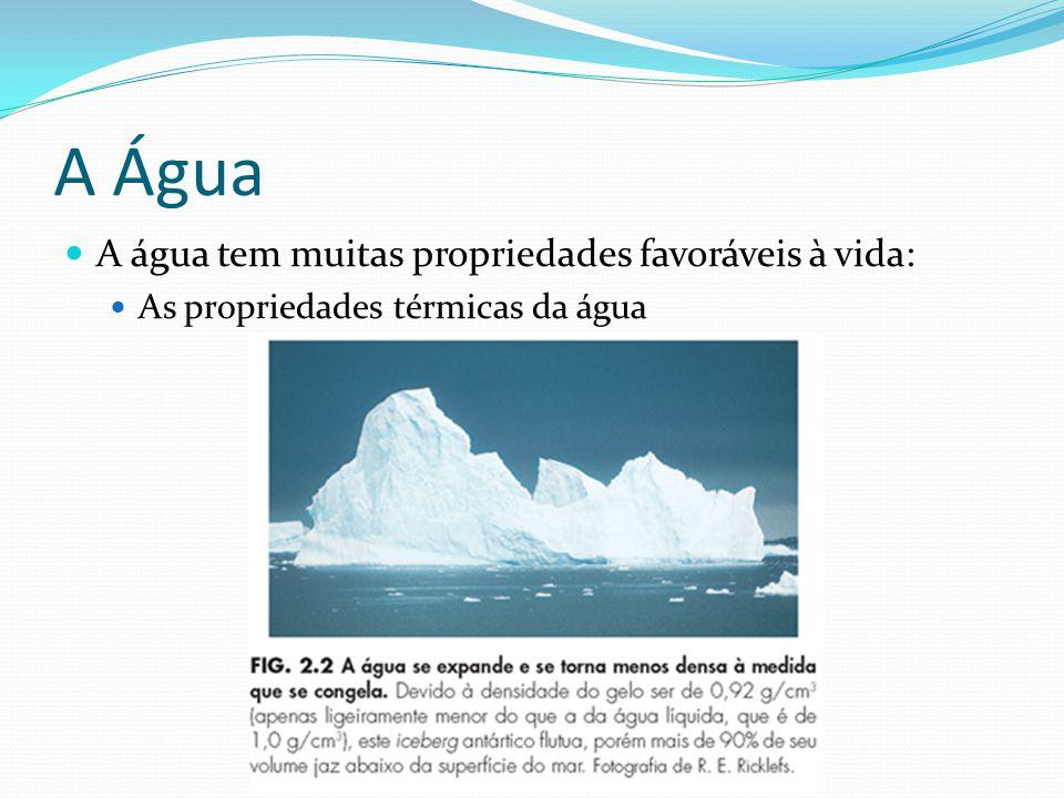 A Água A água tem muitas propriedades favoráveis à vida: