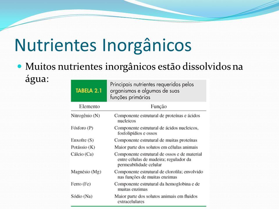 Nutrientes Inorgânicos