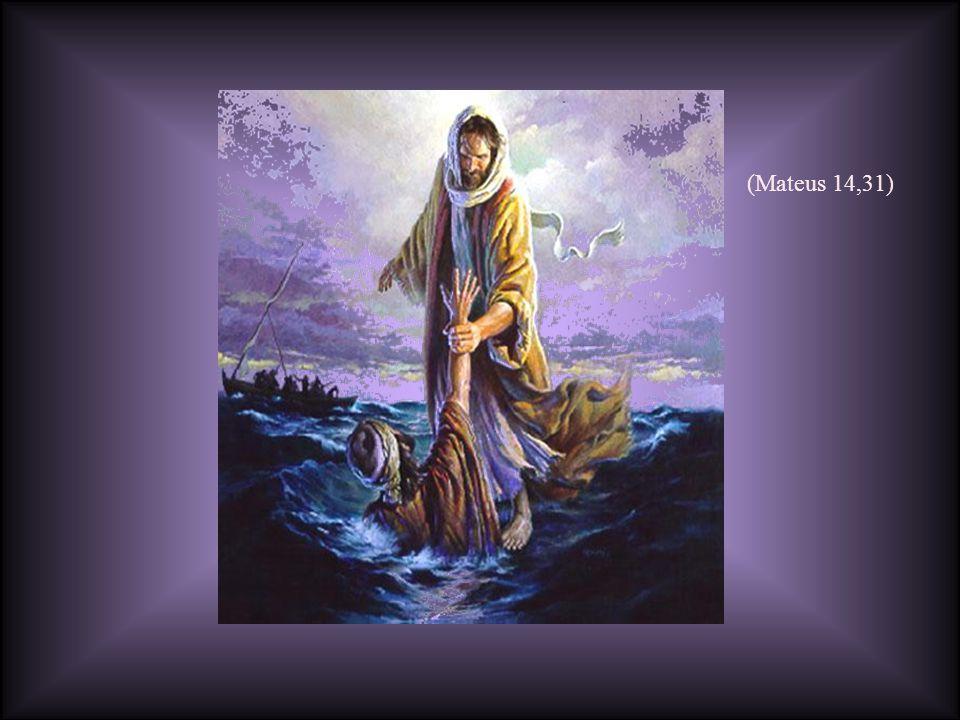 (Mateus 14,31)