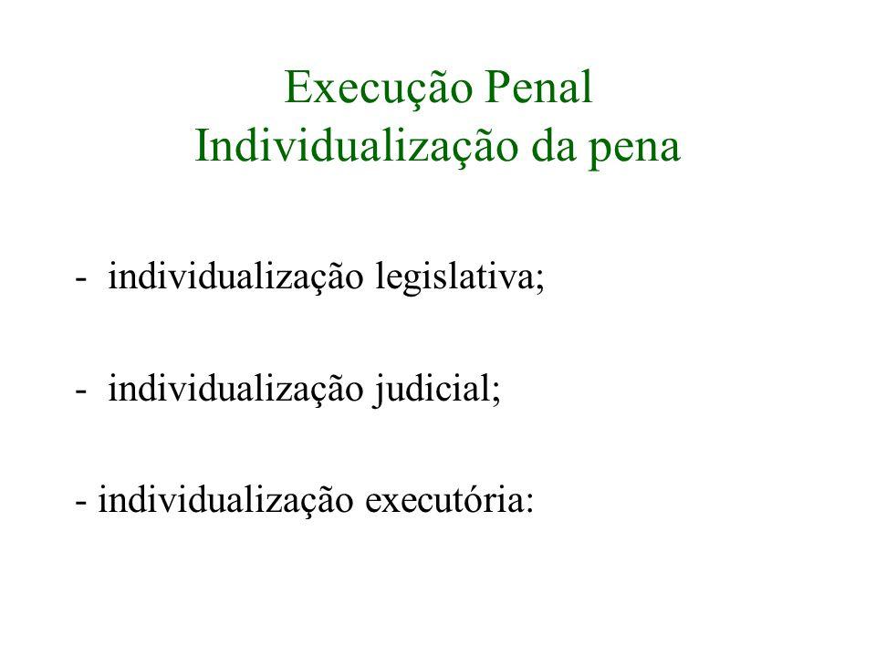 Execução Penal Individualização da pena