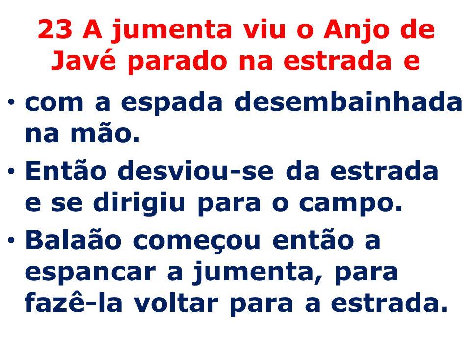 23 A jumenta viu o Anjo de Javé parado na estrada e