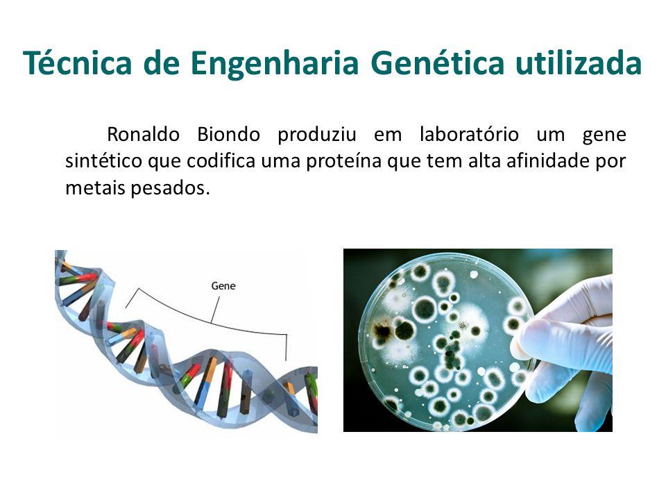 Técnica de Engenharia Genética utilizada