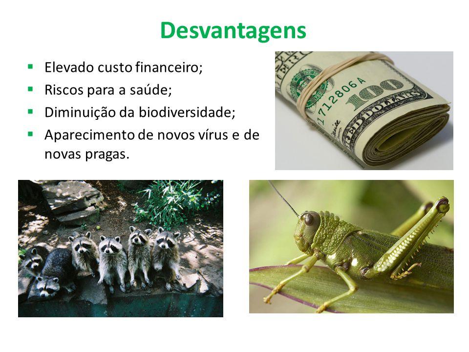 Desvantagens Elevado custo financeiro; Riscos para a saúde;