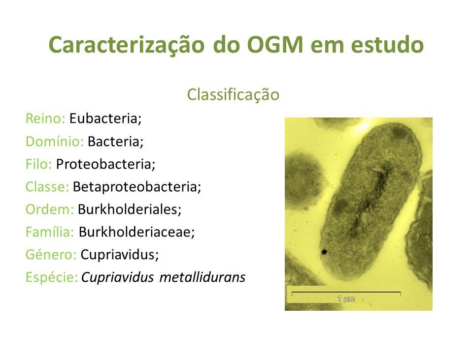 Caracterização do OGM em estudo