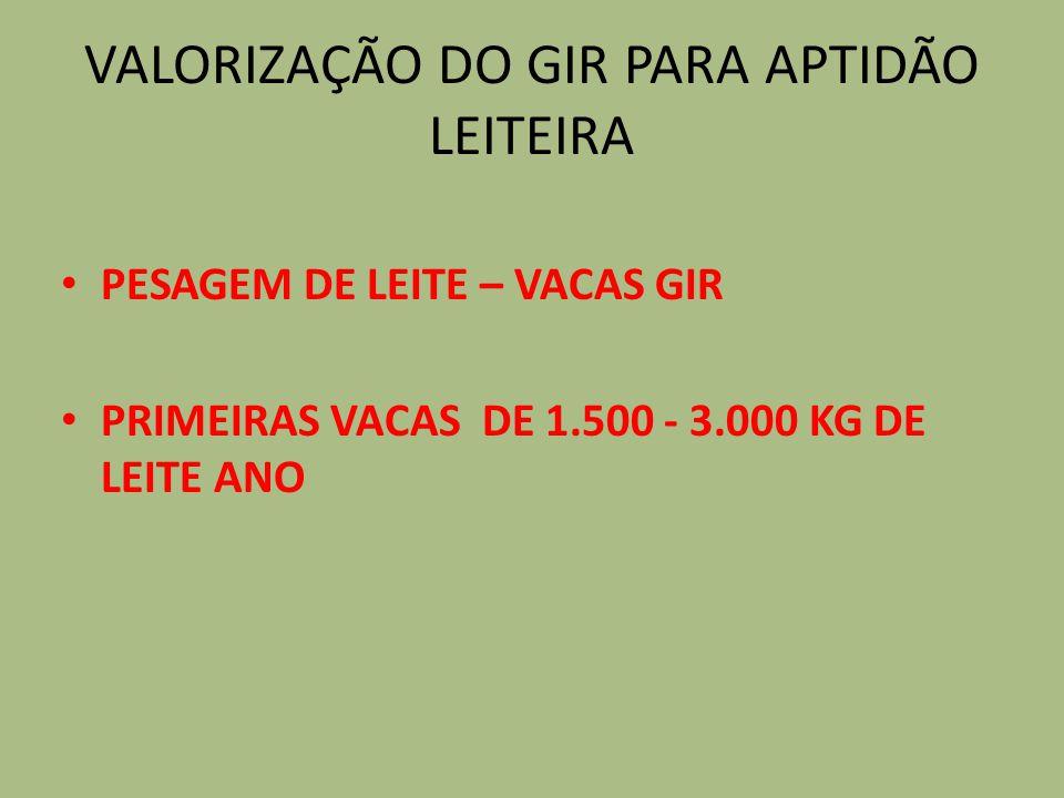 VALORIZAÇÃO DO GIR PARA APTIDÃO LEITEIRA
