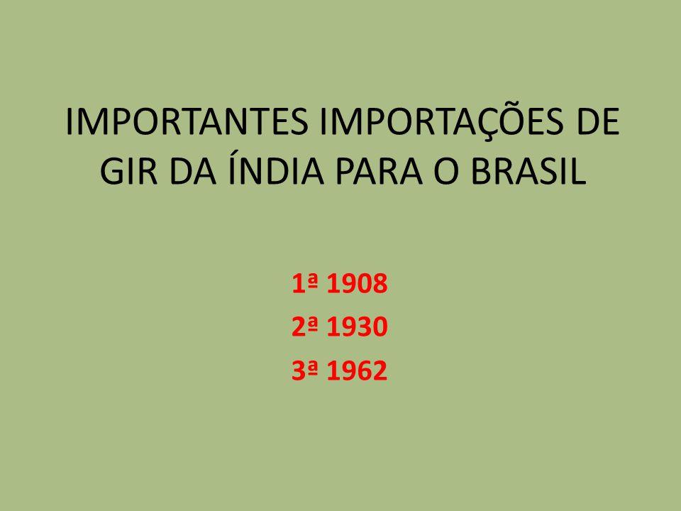 IMPORTANTES IMPORTAÇÕES DE GIR DA ÍNDIA PARA O BRASIL