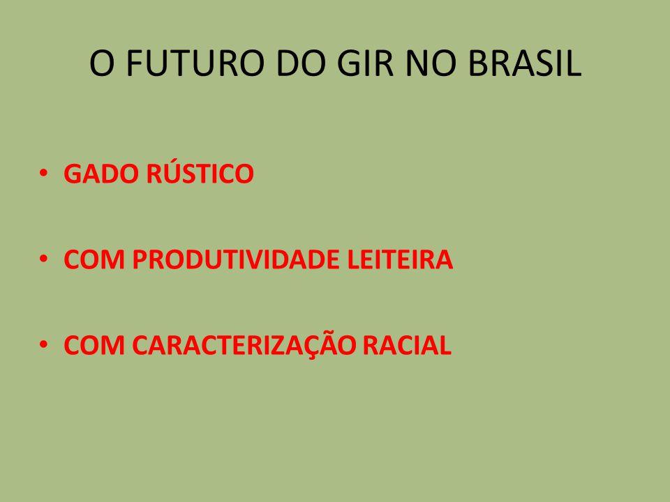 O FUTURO DO GIR NO BRASIL