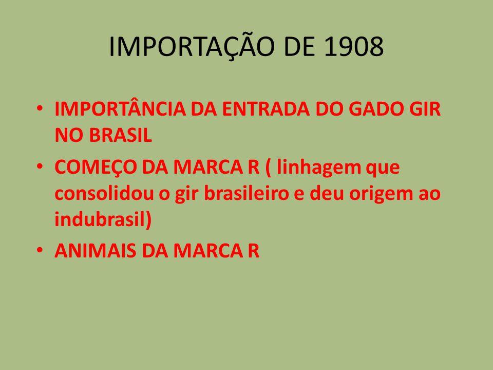 IMPORTAÇÃO DE 1908 IMPORTÂNCIA DA ENTRADA DO GADO GIR NO BRASIL