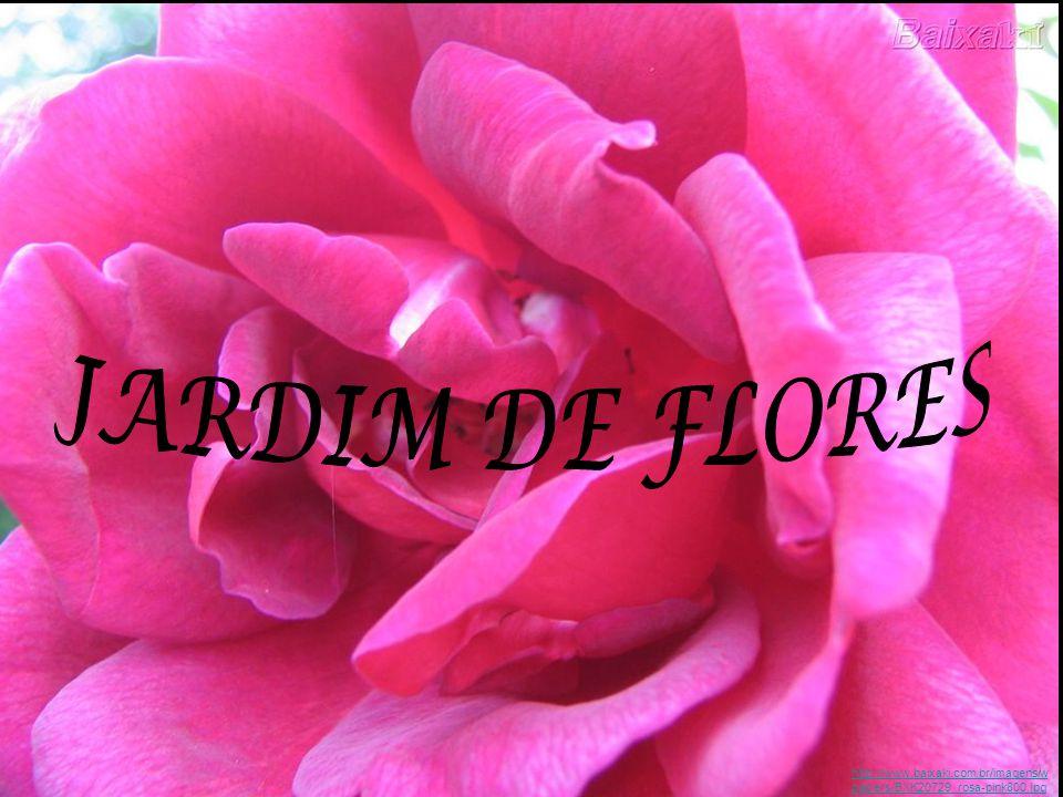 JARDIM DE FLORES http://www.baixaki.com.br/imagens/wpapers/BXK20729_rosa-pink800.jpg