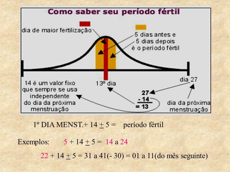 1º DIA MENST.+ 14 + 5 = período fértil