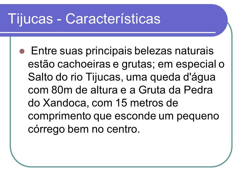 Tijucas - Características