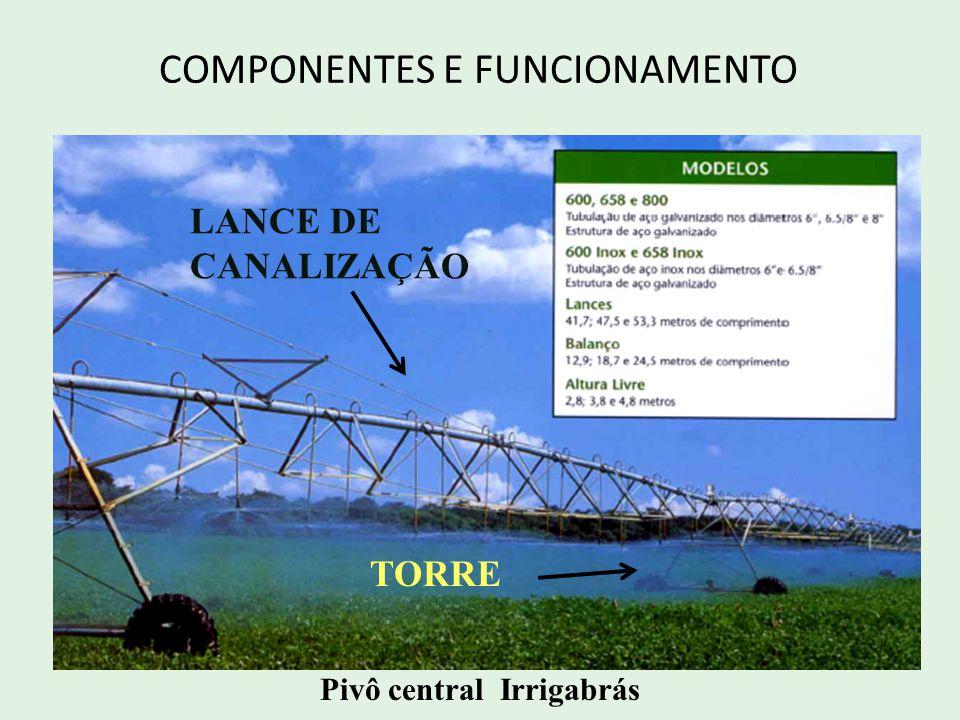 COMPONENTES E FUNCIONAMENTO