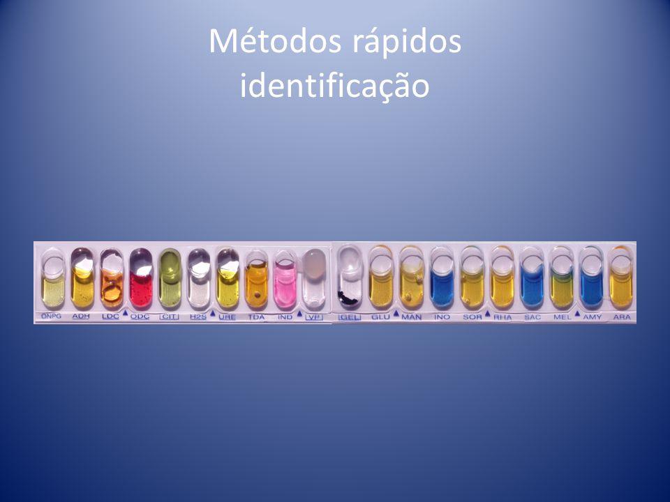 Métodos rápidos identificação