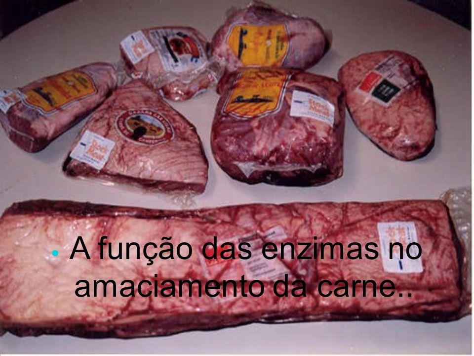 A função das enzimas no amaciamento da carne..