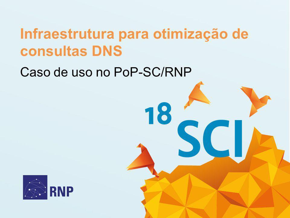 Infraestrutura para otimização de consultas DNS